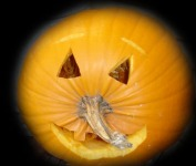 geo-pumpkin
