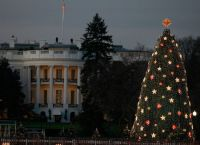 Lights shine on the National Christmas Tree in front of the White House on December 1, 2009. Later in the week President Barack Obama and First Lady Michelle Obama will officially light the tree that sits on the Ellipse.