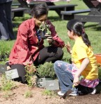 Children from Bancroft Elementary School in Washington, D.C. help First Lady Michelle Obama plant the White House Vegetable Garden, April 9, 2009.  (Official White House Photo by Samantha Appleton)